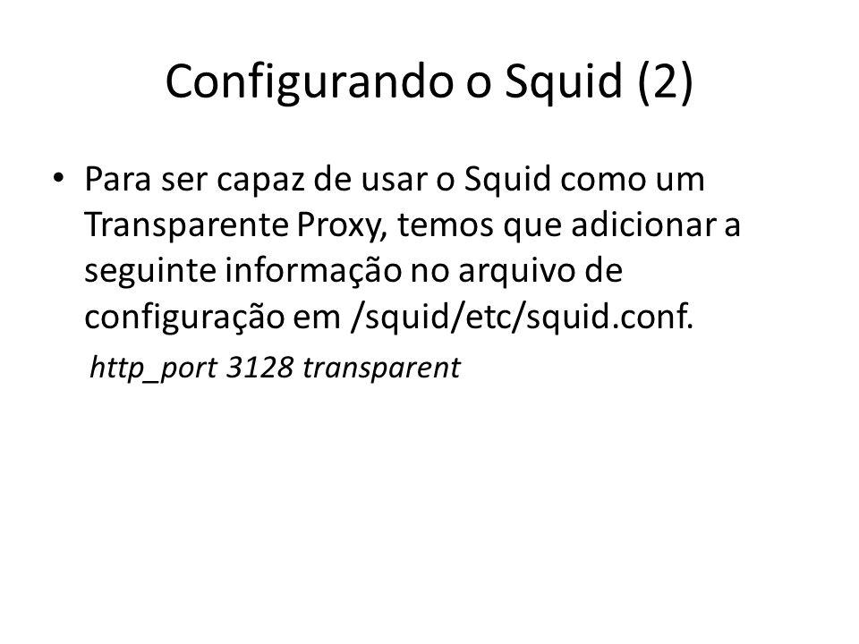 Configurando o Squid (2)