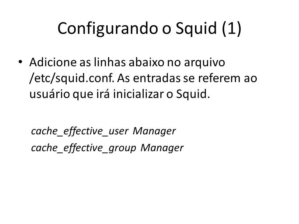 Configurando o Squid (1)