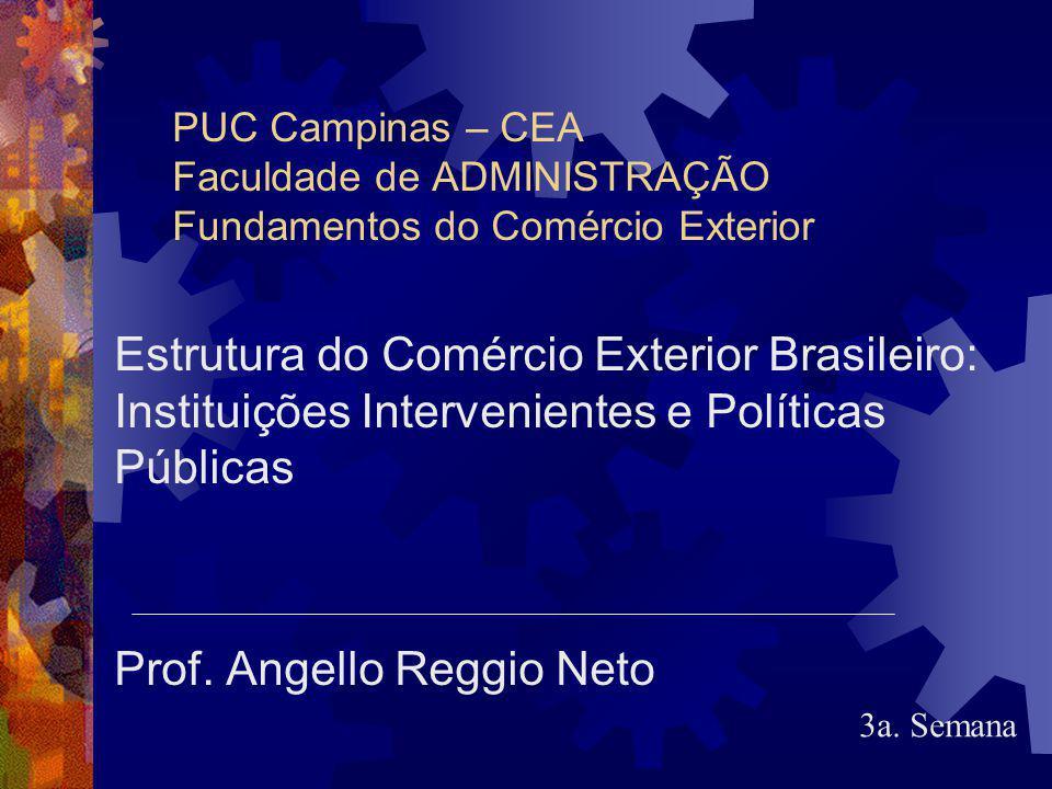 Prof. Angello Reggio Neto