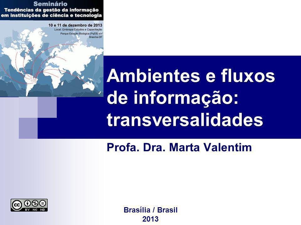Ambientes e fluxos de informação: transversalidades