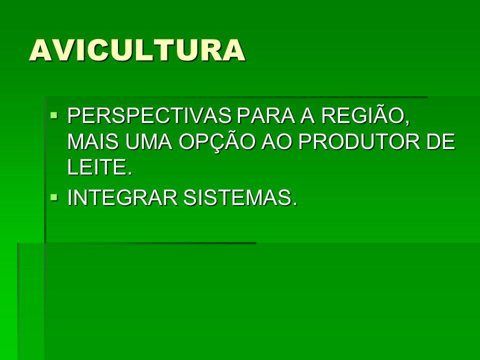 AVICULTURA PERSPECTIVAS PARA A REGIÃO, MAIS UMA OPÇÃO AO PRODUTOR DE LEITE. INTEGRAR SISTEMAS.