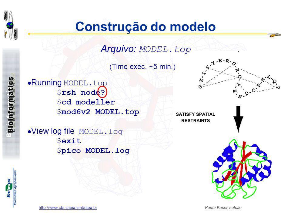 Construção do modelo Arquivo: MODEL.top