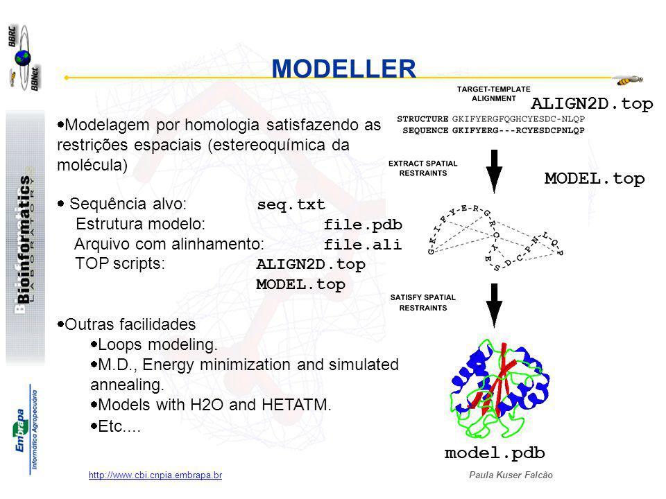 MODELLER ALIGN2D.top MODEL.top model.pdb