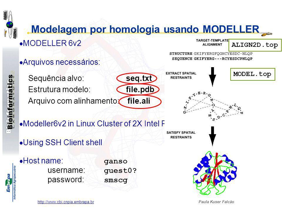 Modelagem por homologia usando MODELLER