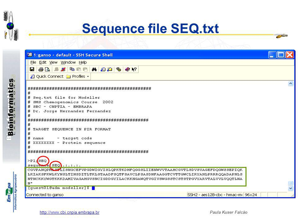 Sequence file SEQ.txt http://www.cbi.cnpia.embrapa.br
