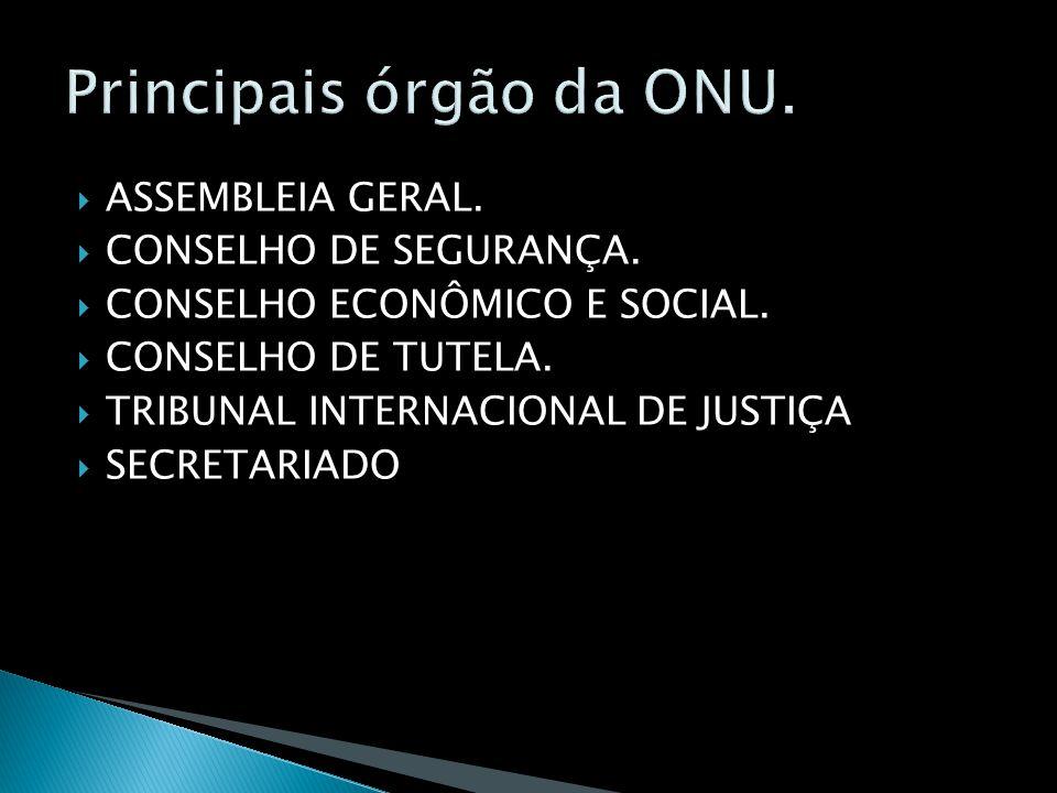 Principais órgão da ONU.