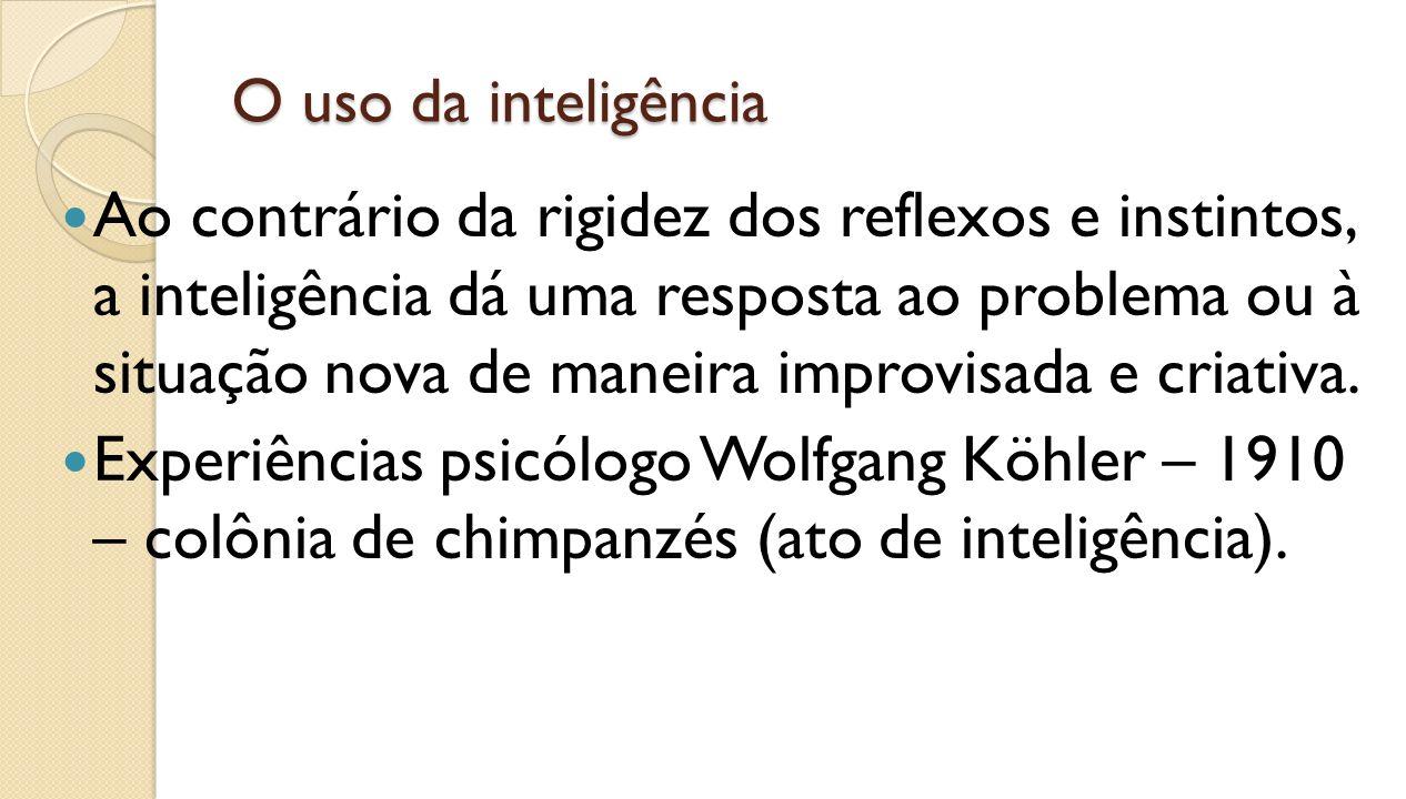 O uso da inteligência
