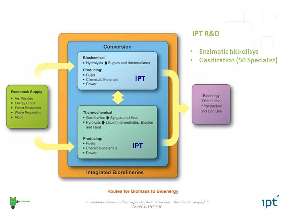 IPT R&D Enzimatic hidrolisys Gasification (50 Specialist) IPT IPT