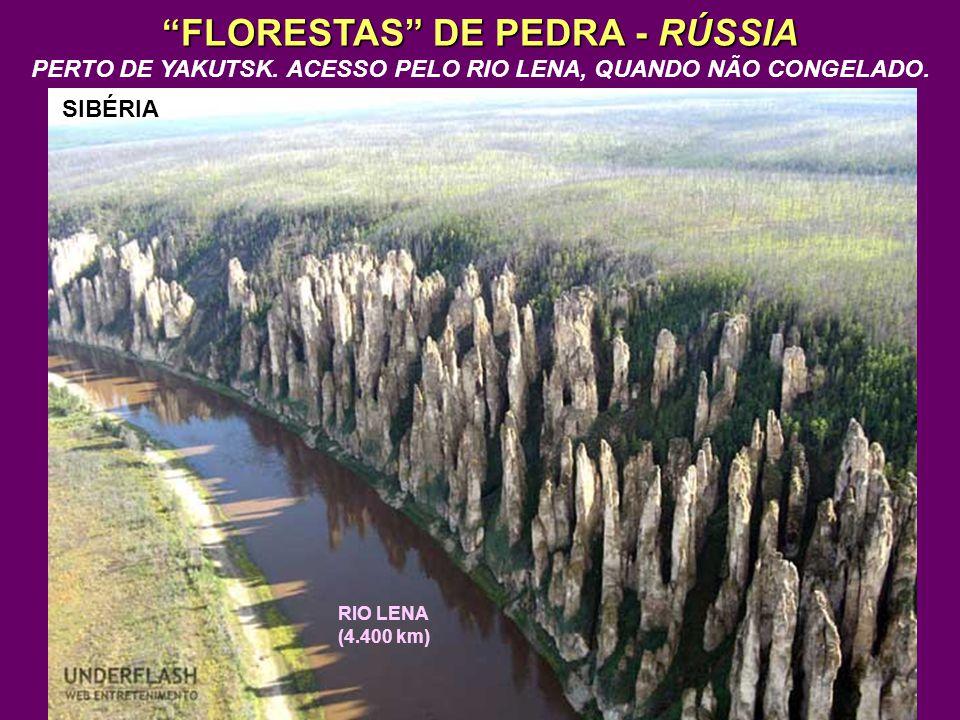 FLORESTAS DE PEDRA - RÚSSIA PERTO DE YAKUTSK