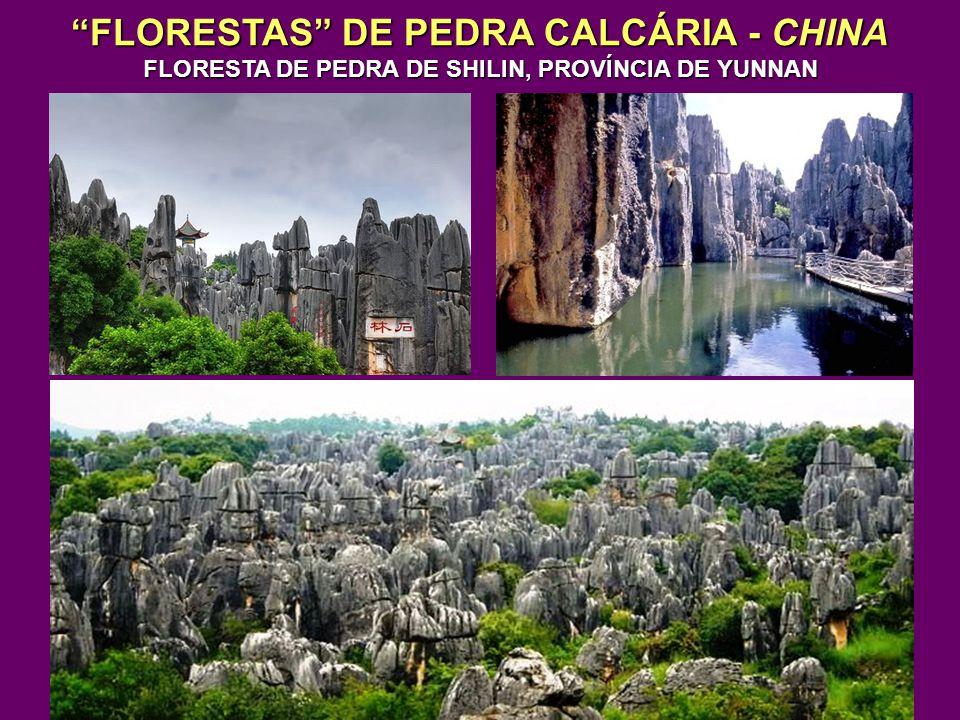 FLORESTAS DE PEDRA CALCÁRIA - CHINA FLORESTA DE PEDRA DE SHILIN, PROVÍNCIA DE YUNNAN
