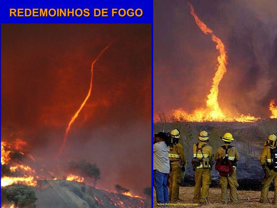 REDEMOINHOS DE FOGO