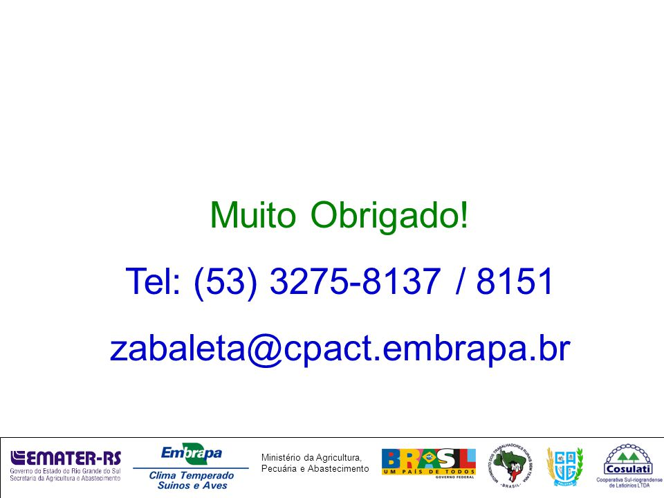 Muito Obrigado! Tel: (53) 3275-8137 / 8151 zabaleta@cpact.embrapa.br