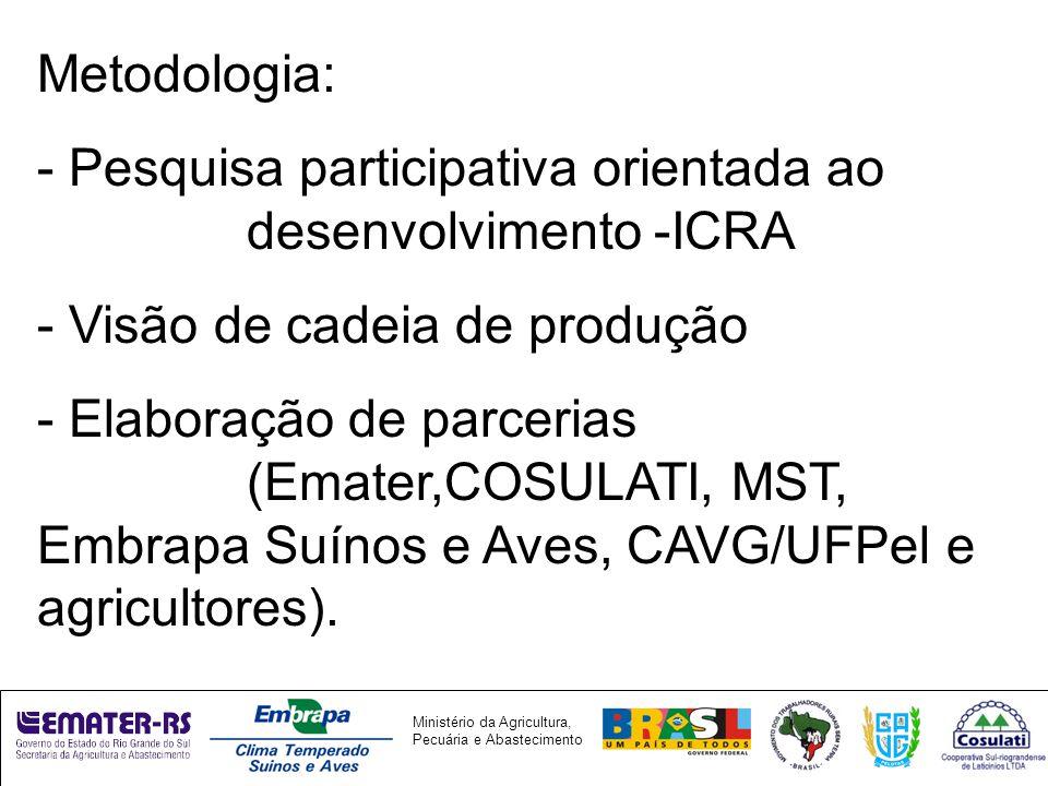 Metodologia: - Pesquisa participativa orientada ao desenvolvimento -ICRA. - Visão de cadeia de produção.