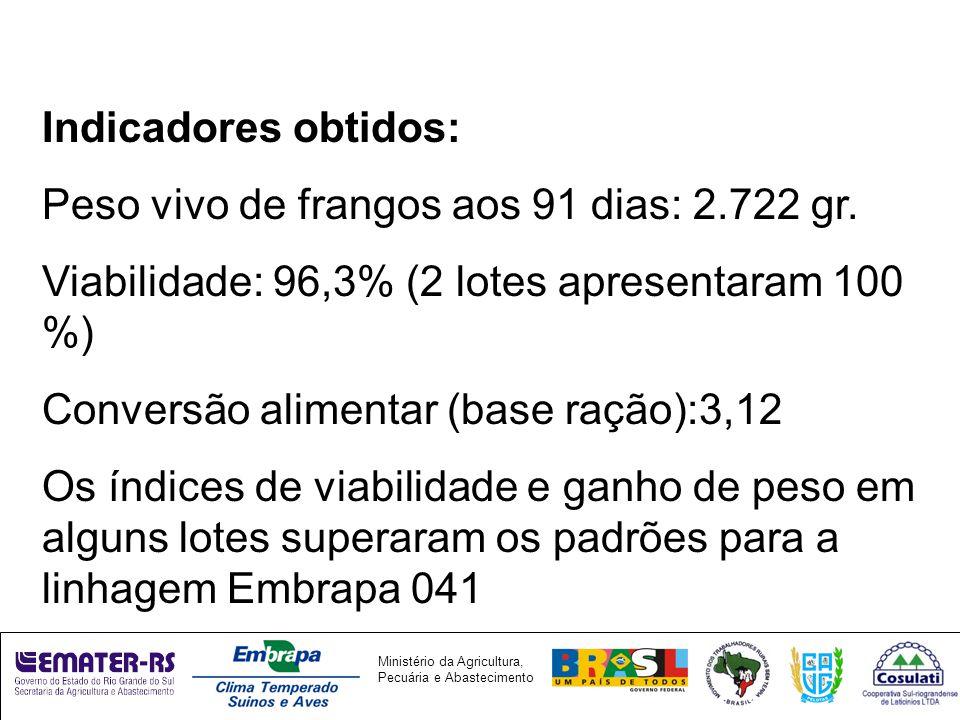 Indicadores obtidos: Peso vivo de frangos aos 91 dias: 2.722 gr. Viabilidade: 96,3% (2 lotes apresentaram 100 %)