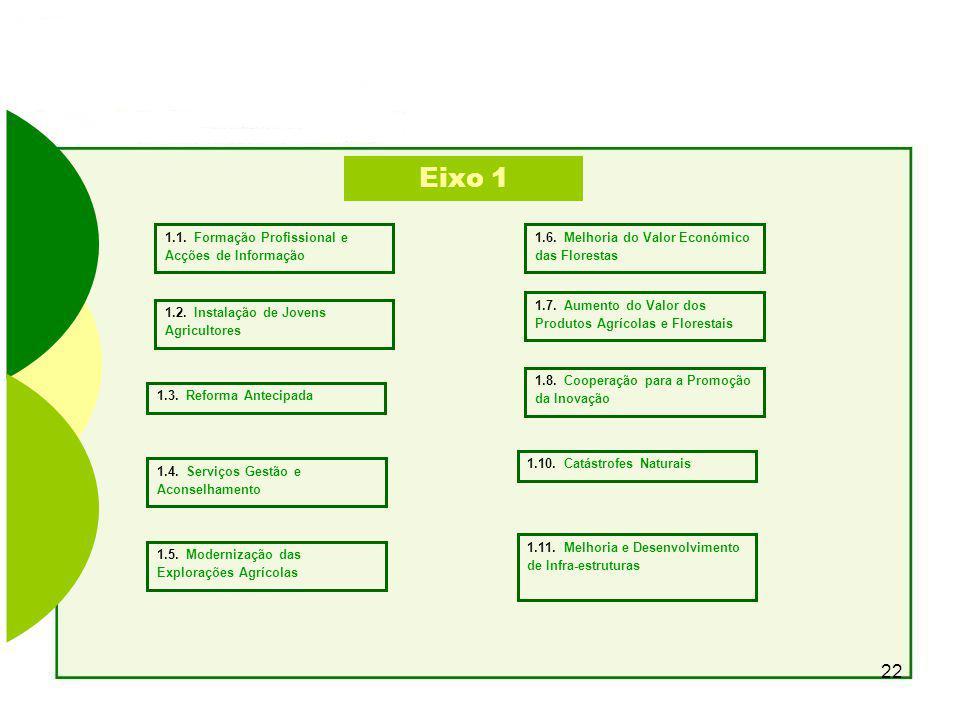 Eixo 1 1.1. Formação Profissional e Acções de Informação