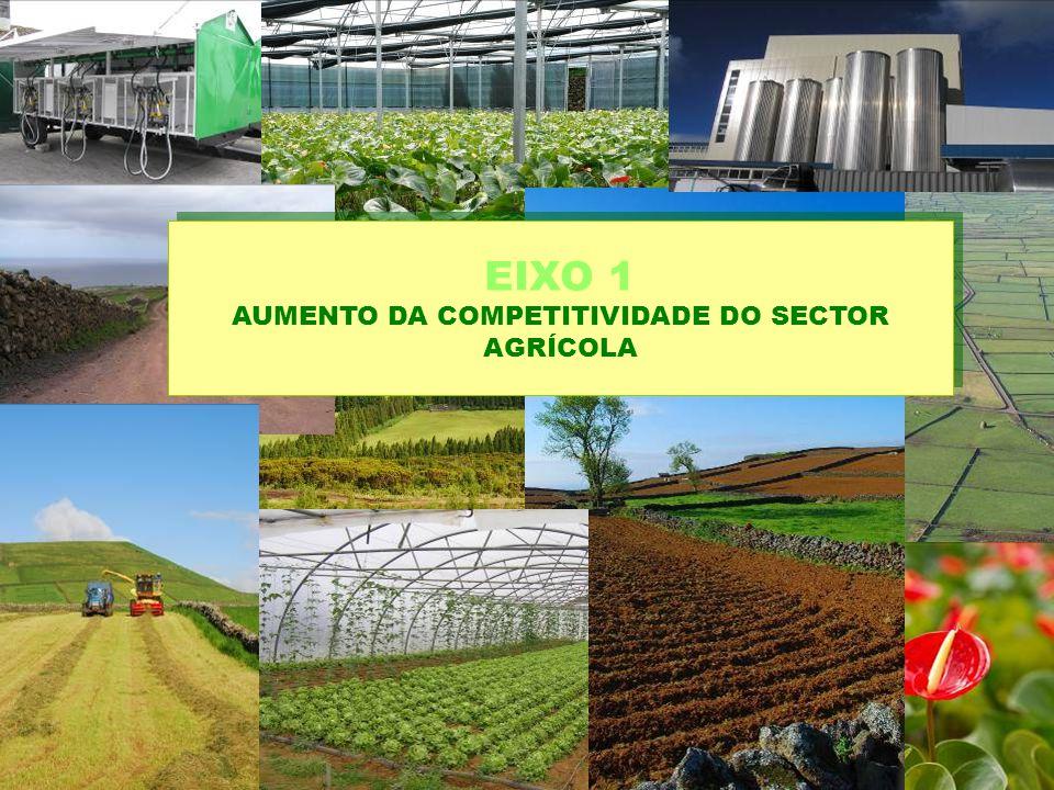 EIXO 1 AUMENTO DA COMPETITIVIDADE DO SECTOR AGRÍCOLA