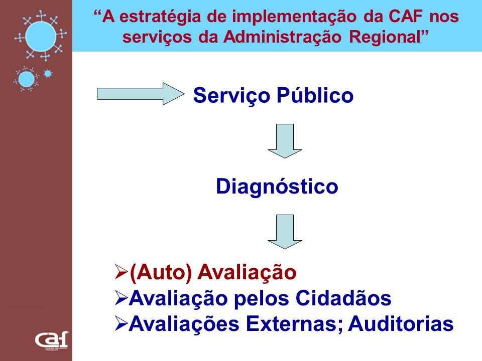 Avaliação pelos Cidadãos Avaliações Externas; Auditorias