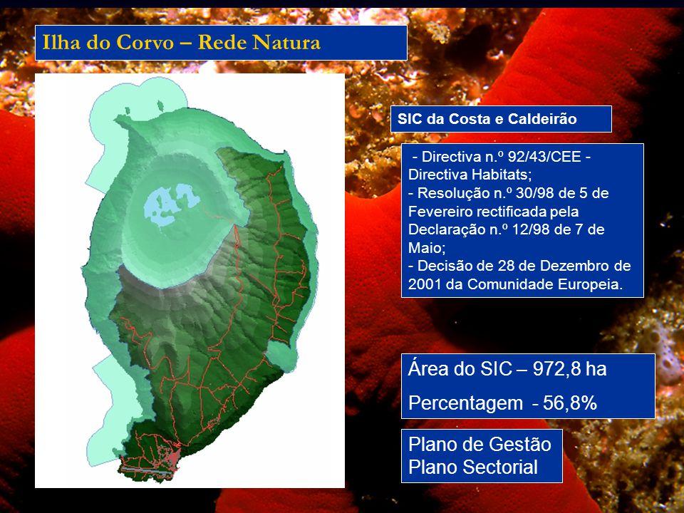 Ilha do Corvo – Rede Natura
