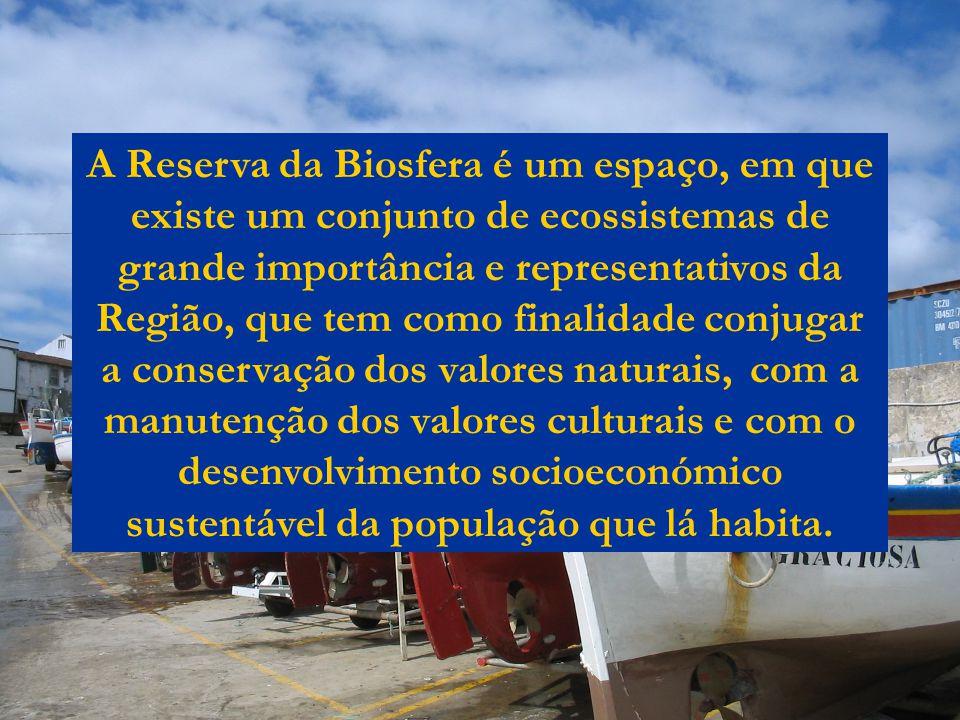 A Reserva da Biosfera é um espaço, em que existe um conjunto de ecossistemas de grande importância e representativos da Região, que tem como finalidade conjugar a conservação dos valores naturais, com a manutenção dos valores culturais e com o desenvolvimento socioeconómico sustentável da população que lá habita.