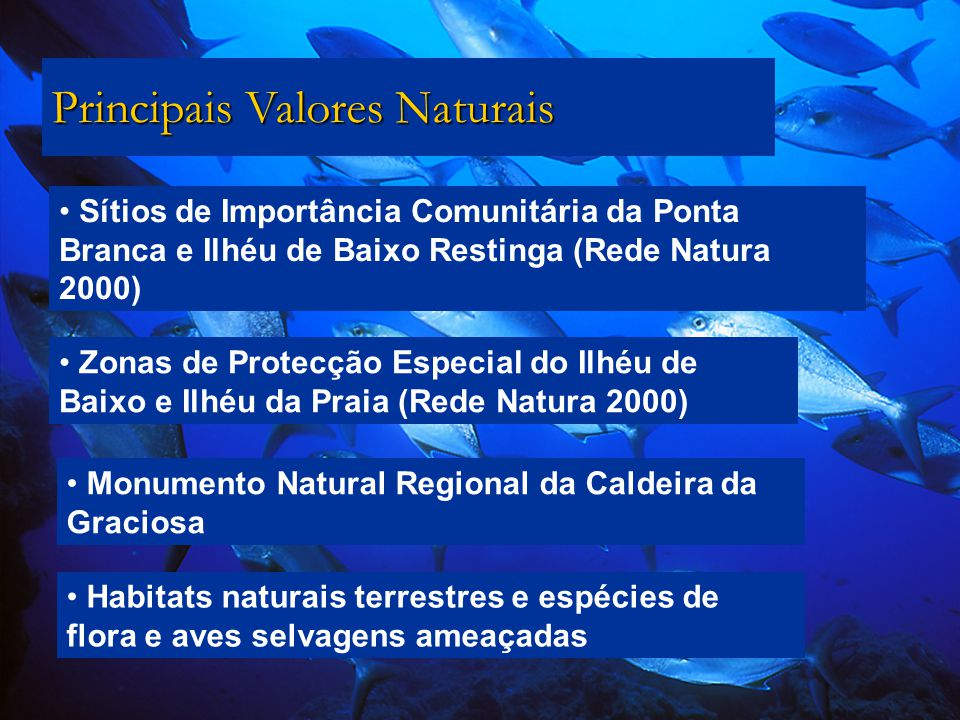 Principais Valores Naturais