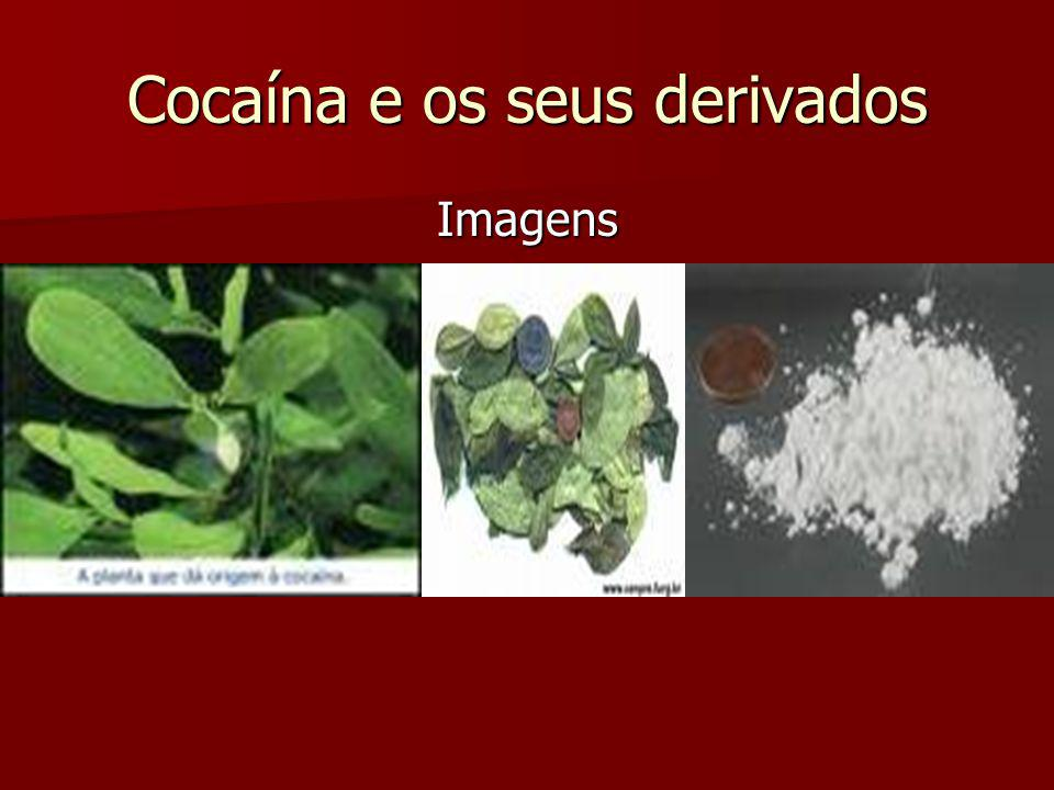 Cocaína e os seus derivados