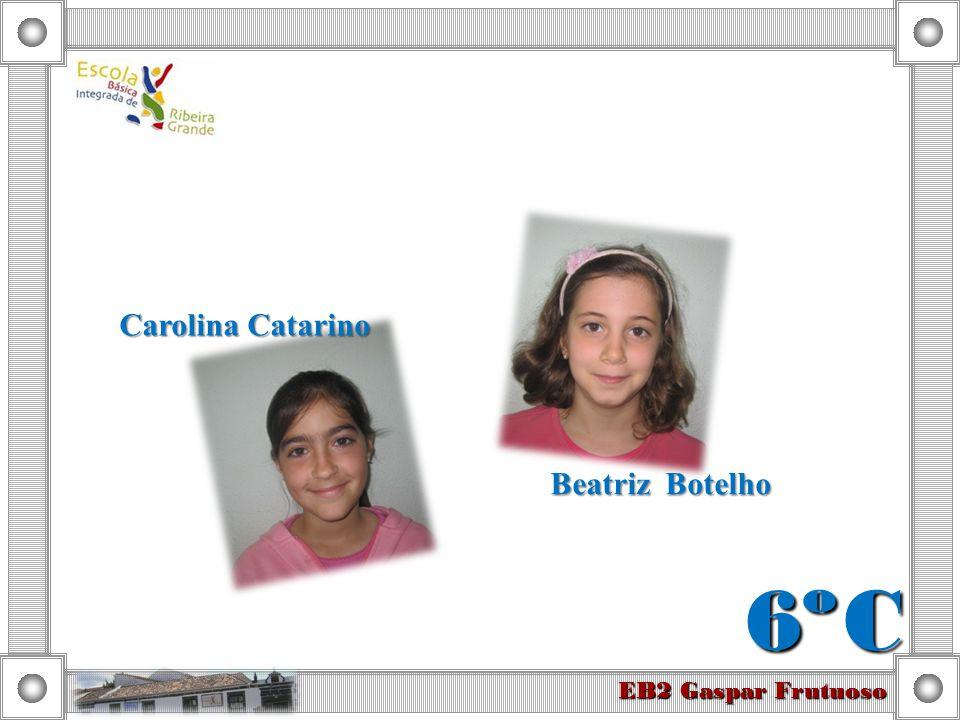 Carolina Catarino Beatriz Botelho 6º C EB2 Gaspar Frutuoso