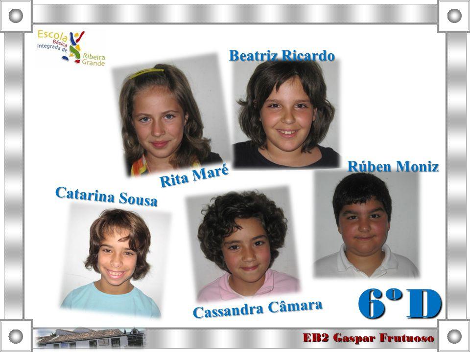 6º D Beatriz Ricardo Rúben Moniz Rita Maré Catarina Sousa