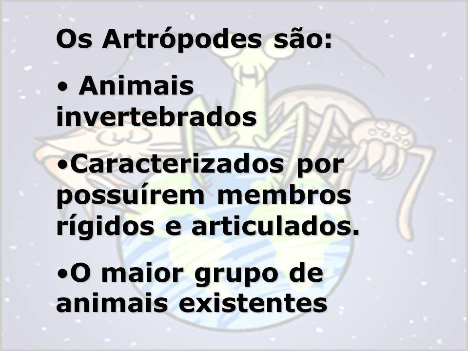 Os Artrópodes são: Animais invertebrados. Caracterizados por possuírem membros rígidos e articulados.
