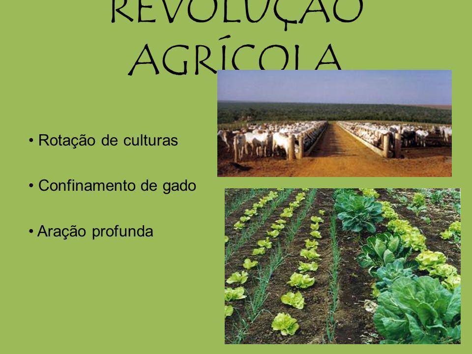 REVOLUÇÃO AGRÍCOLA • Rotação de culturas • Confinamento de gado • Aração profunda