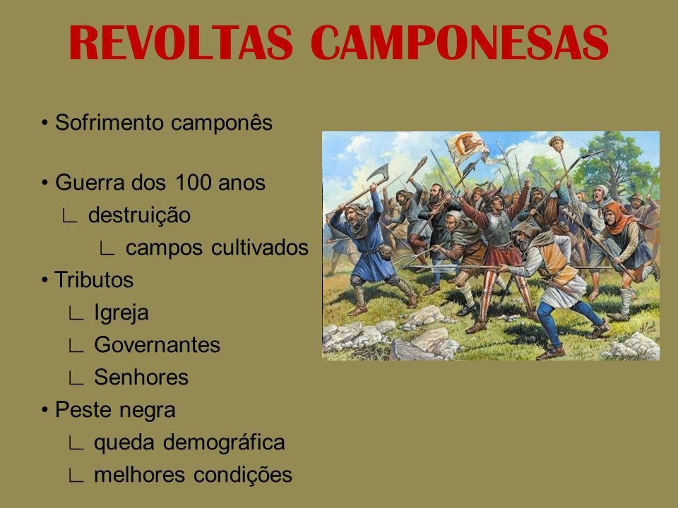 REVOLTAS CAMPONESAS