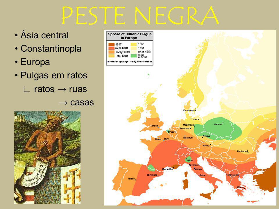 PESTE NEGRA • Ásia central • Constantinopla • Europa • Pulgas em ratos ∟ ratos → ruas → casas
