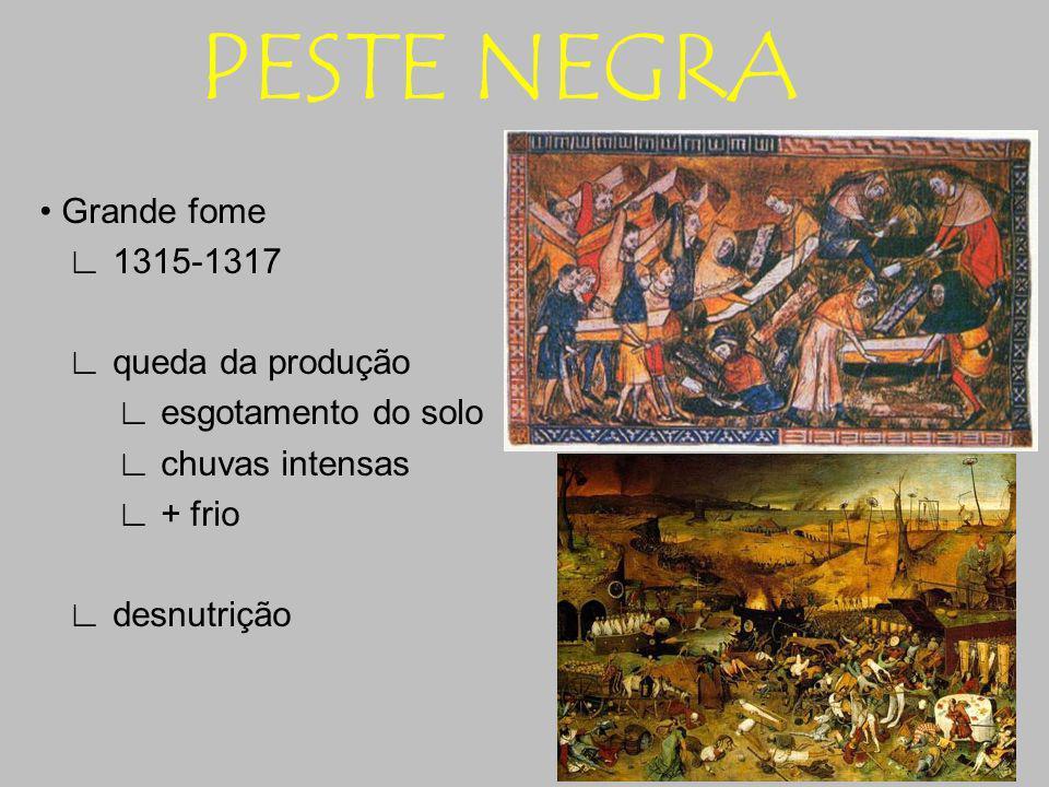 PESTE NEGRA • Grande fome ∟ 1315-1317 ∟ queda da produção ∟ esgotamento do solo ∟ chuvas intensas ∟ + frio ∟ desnutrição