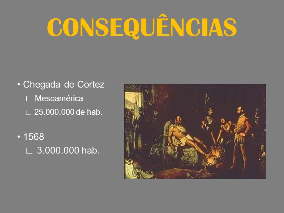 CONSEQUÊNCIAS • Chegada de Cortez ∟ Mesoamérica ∟ 25.000.000 de hab. • 1568 ∟ 3.000.000 hab.