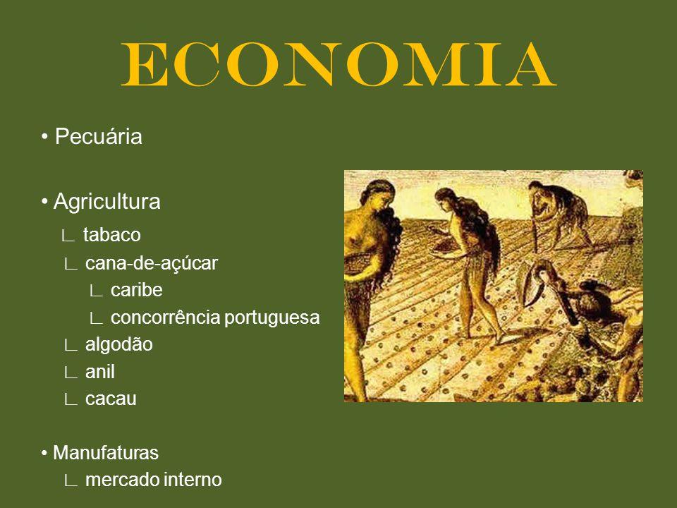 ECONOMIA • Pecuária • Agricultura ∟ tabaco ∟ cana-de-açúcar ∟ caribe