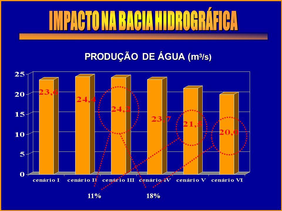 IMPACTO NA BACIA HIDROGRÁFICA