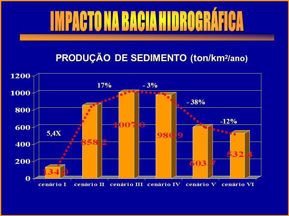 IMPACTO NA BACIA HIDROGRÁFICA PRODUÇÃO DE SEDIMENTO (ton/km2/ano)