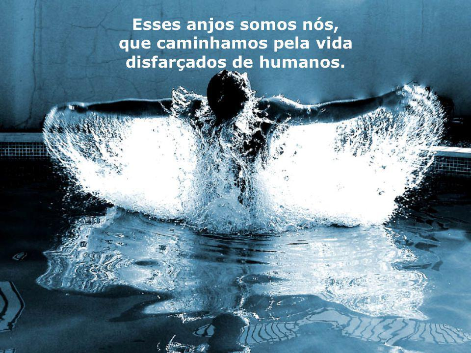 Esses anjos somos nós, que caminhamos pela vida disfarçados de humanos.