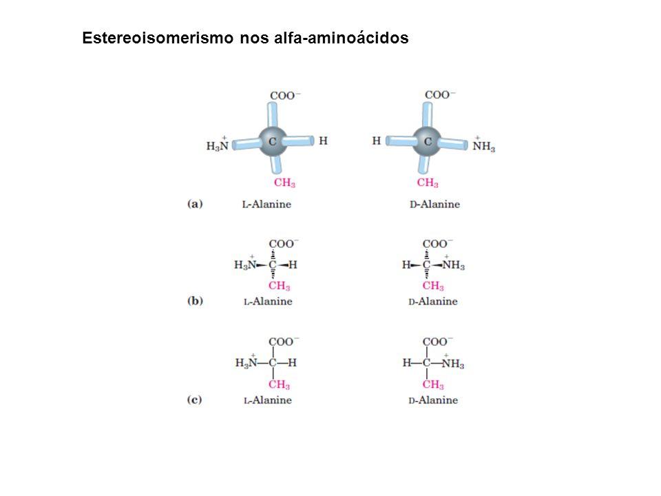 Estereoisomerismo nos alfa-aminoácidos
