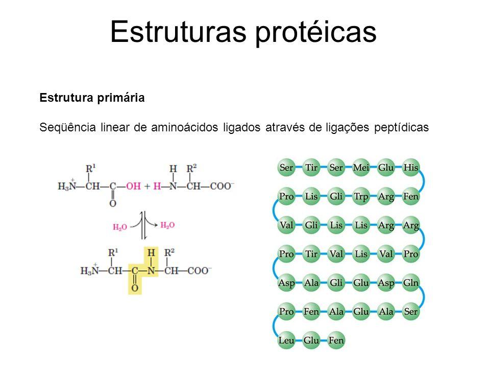 Estruturas protéicas Estrutura primária