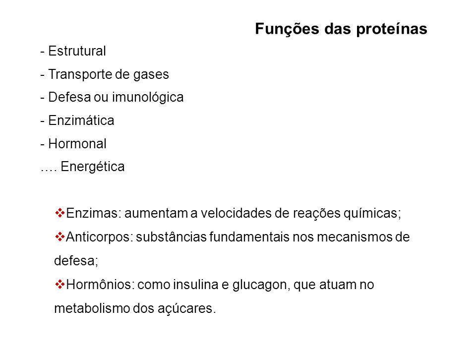 Funções das proteínas - Estrutural - Transporte de gases