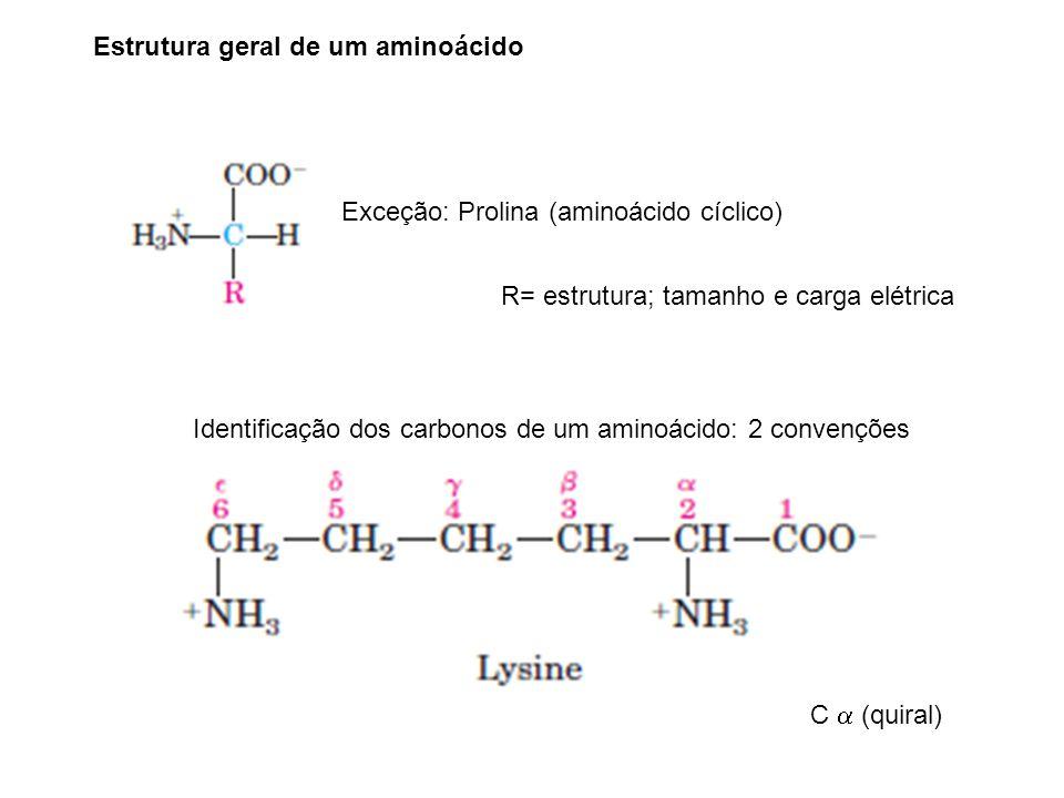 Estrutura geral de um aminoácido