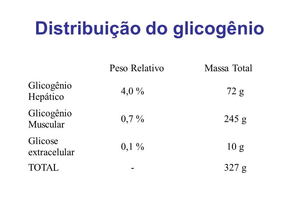 Distribuição do glicogênio