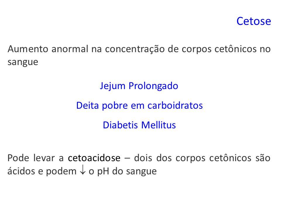 Deita pobre em carboidratos