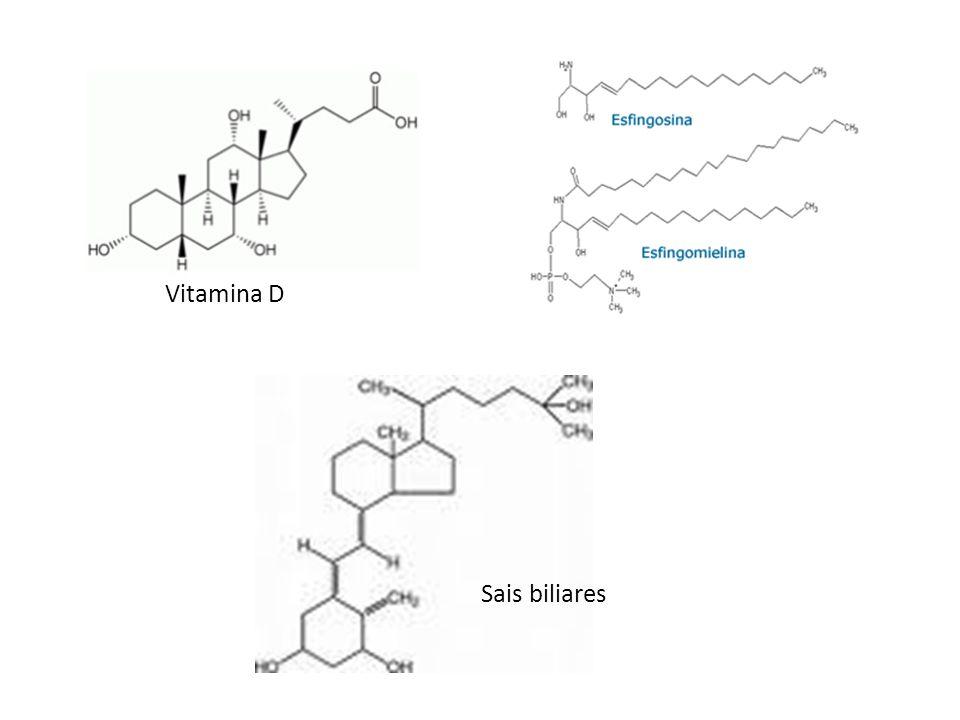 Vitamina D Sais biliares