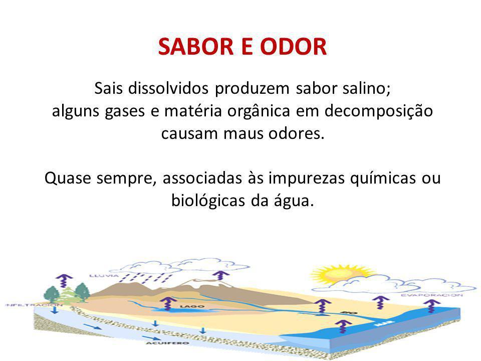 SABOR E ODOR Sais dissolvidos produzem sabor salino; alguns gases e matéria orgânica em decomposição causam maus odores.