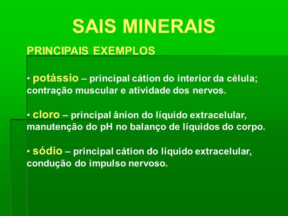 SAIS MINERAIS PRINCIPAIS EXEMPLOS