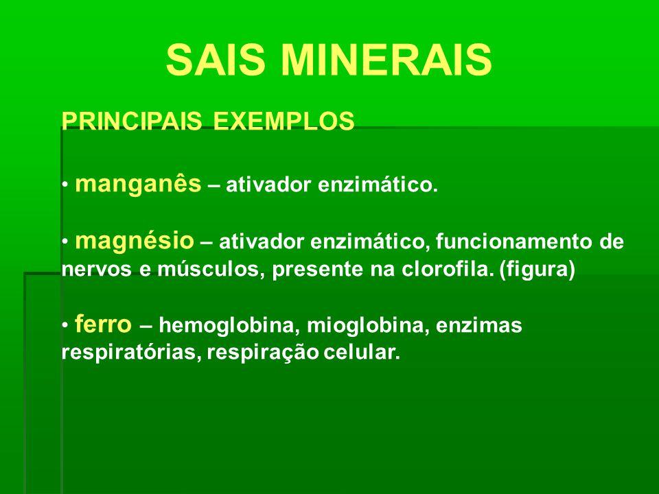 SAIS MINERAIS PRINCIPAIS EXEMPLOS manganês – ativador enzimático.