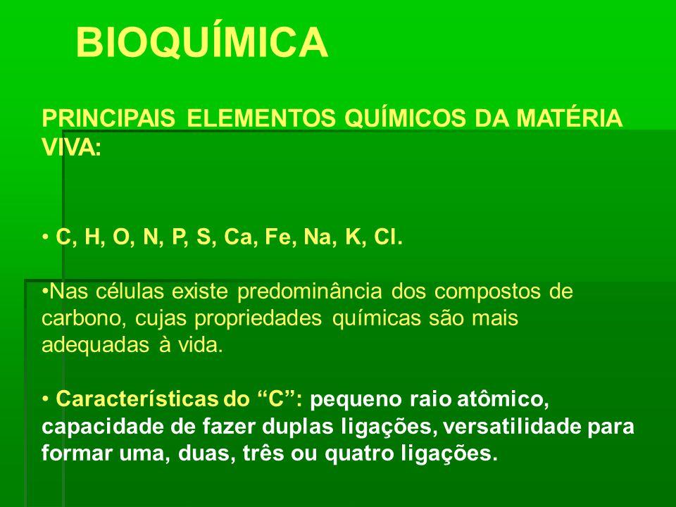 BIOQUÍMICA PRINCIPAIS ELEMENTOS QUÍMICOS DA MATÉRIA VIVA: