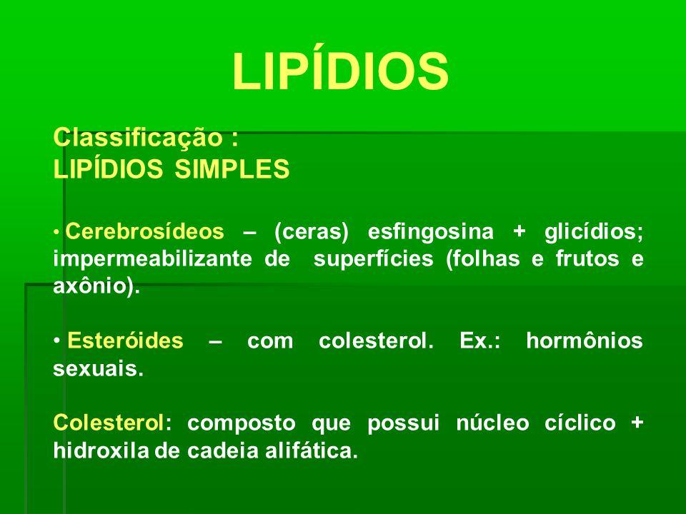 LIPÍDIOS Classificação :