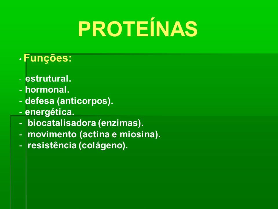PROTEÍNAS hormonal. defesa (anticorpos). energética.